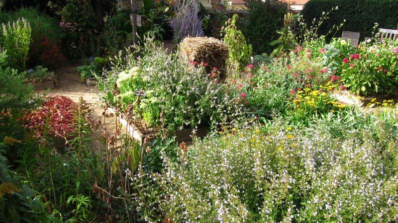 bylinková záhrada, foto: atelier zelene, s.r.o.