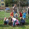 Zasadiť strom a stárnuť spolu s ním