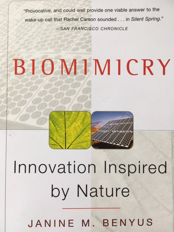 Biomimicry - Innovation Inspired by Nature