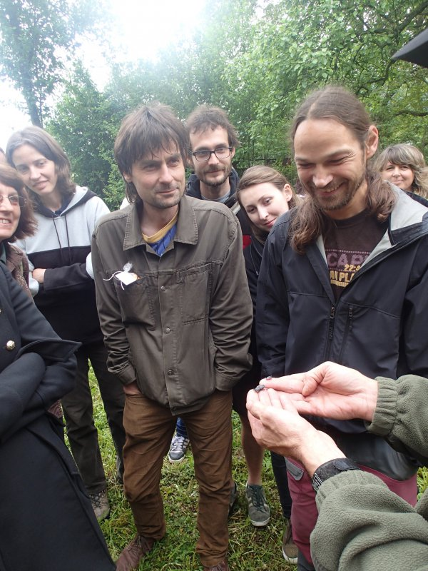 Chrobáky v prírodnej záhrade