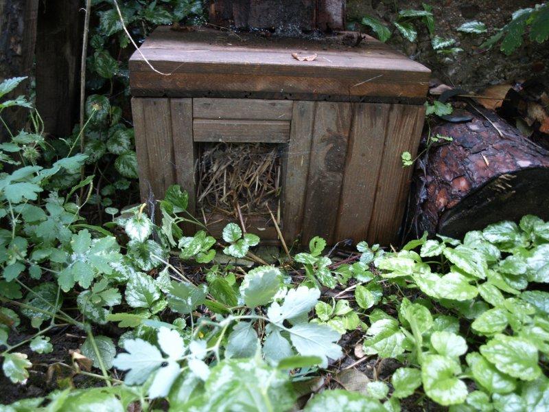 Drevený domček pre ježka