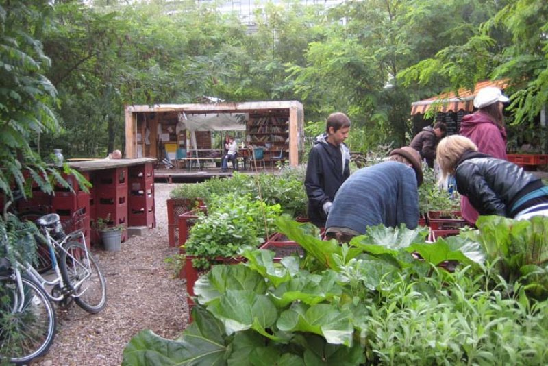 Komunitná záhrada v Berlíne