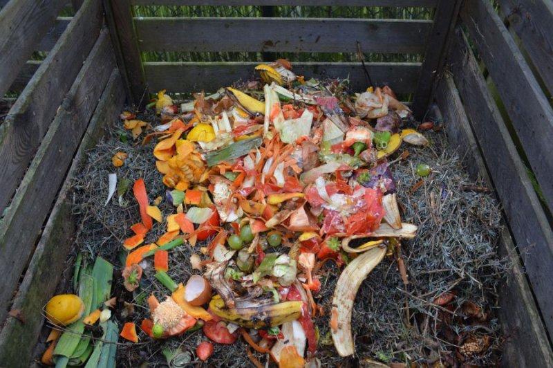 Miss kompost 2015     foto: pixabay.com