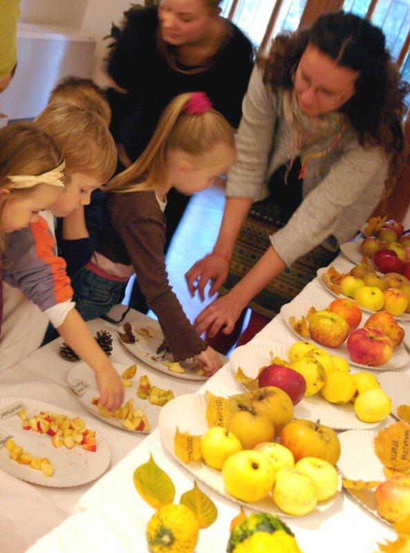 Poznávanie jabĺk podľa chuti a farby