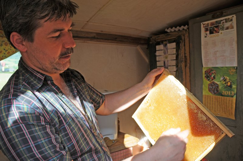 Stáčanie medu