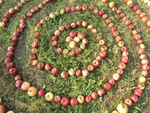 Týždeň pre jablko