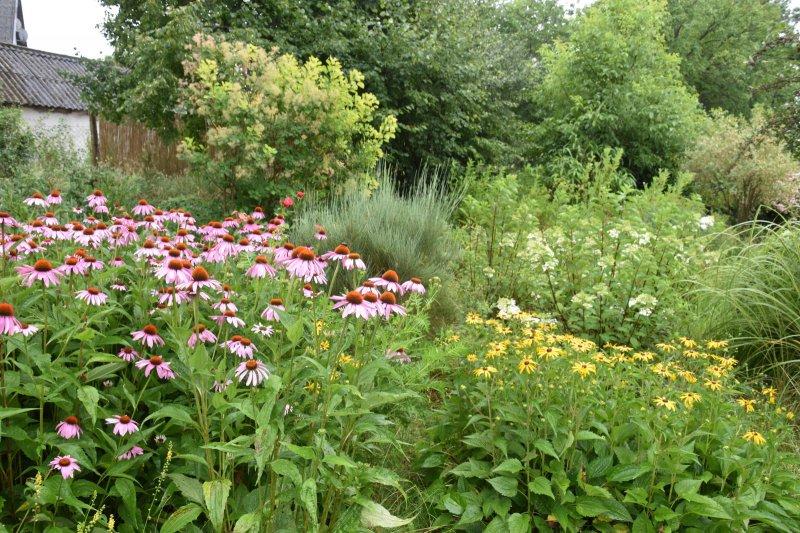 Ukážková prírodná záhrada – Pažiť