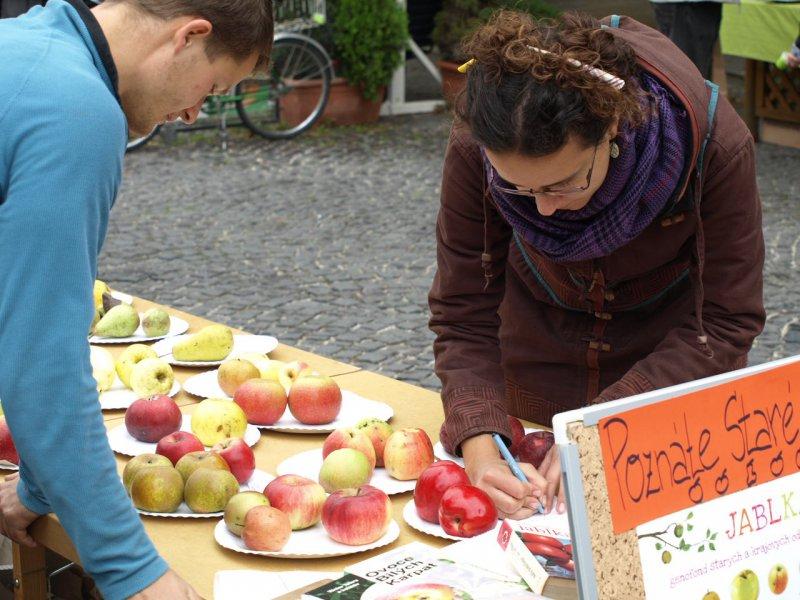 Výstava tradičných sort jabĺk a hrušiek