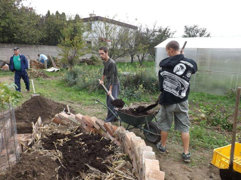 Využitie zvyškov rastlín, kukurice, lístia...