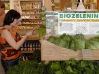 Albio - biozelenina