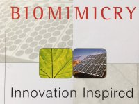 biomimicry - innovation inspired...