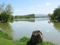 Bodovský rybník,  foto: Pavol Fábry