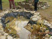 budovanie jazierka
