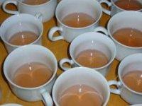 Čaj s echinaceou