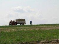 cena biopotravín