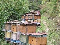 farma Brezovica - úle