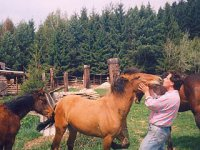 farma Sklené - láska | archív CEA