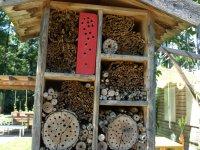 inšpirácia na hmyzí hotel