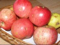 Jablká,  foto: Hanzelová Miriam