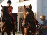 Koniarka pripravuje kone,  foto: Žaneta Minarčíková