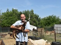 kozia farma - chovateľ zoltán varga