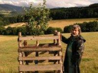 muž, čo sadí stromy