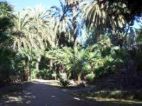 Park v Barcelóne