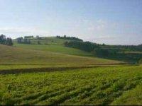 Pole - Odorica,  foto: www.eafra.sk