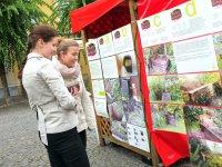 Predstavenie jednotlivých kompostov,  foto: Priatelia Zeme – SPZ