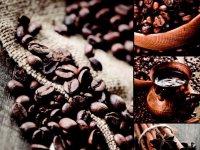 príbeh kávového zrnka