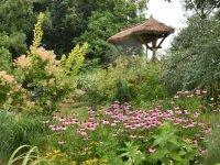 prírodná záhrada Čechynce