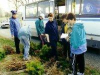 """projekt """"10 000 stromov..."""