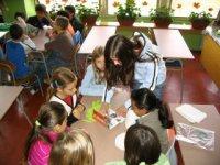 rovesnícke vzdelávanie