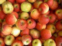 Šťavnaté jabĺčka