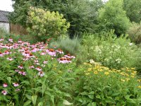 ukážková prírodná záhrada...