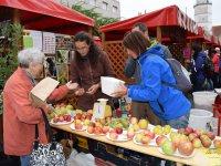 Výstavka a predaj starých a krajových odrôd jabĺk a hrušiek,  foto: Klaudia Medalová