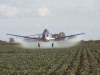 Pesticídy