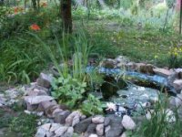 záhradné jazierko