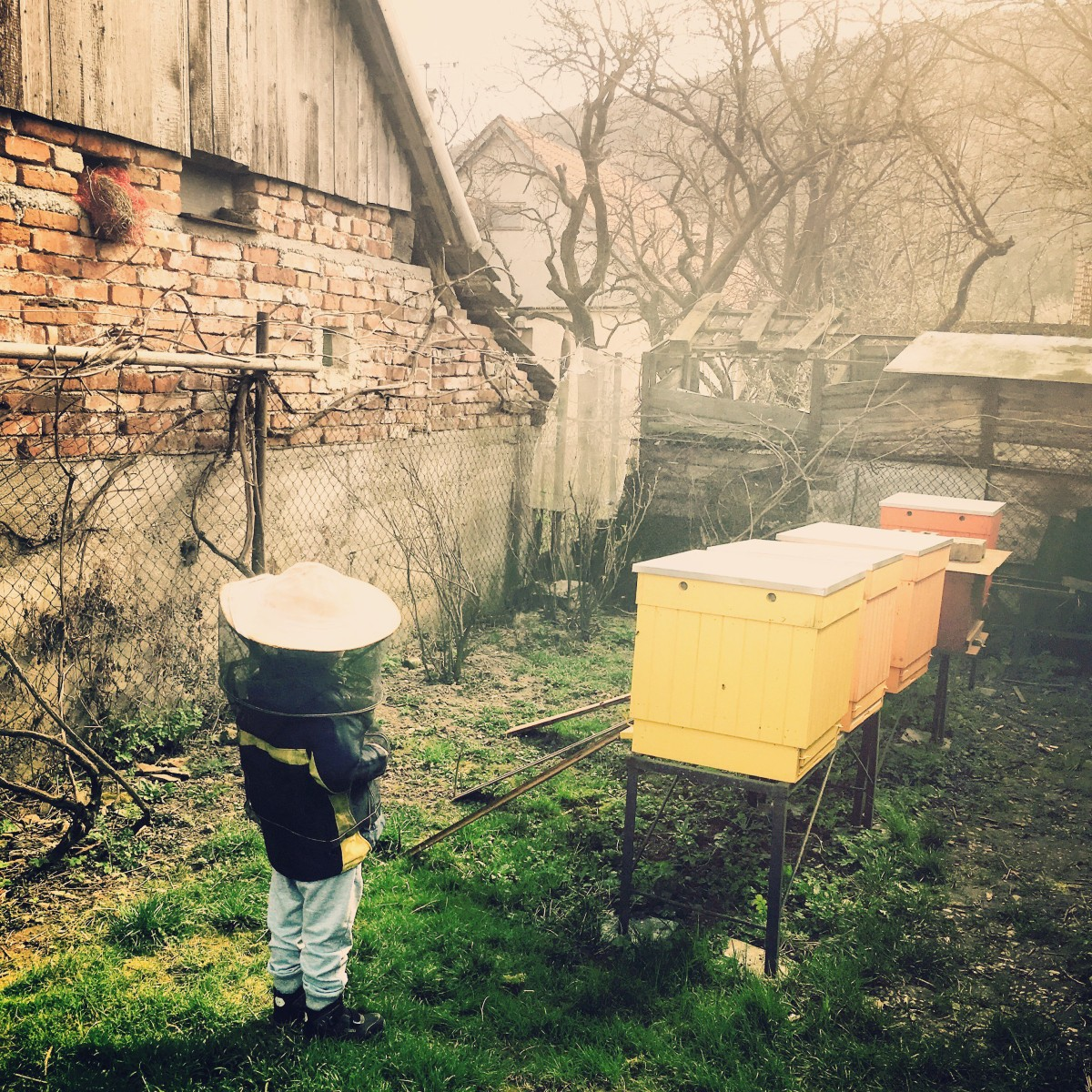zázrak pána včeličku