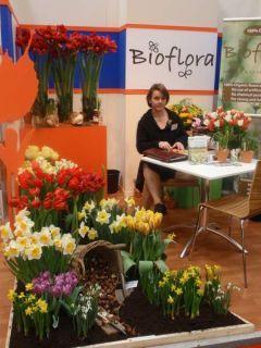 Certifikované BIO narcisy, tulipány...