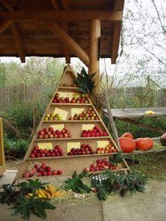 Biojablká - Sad Lívia
