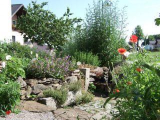 Bylinková záhrada - areál firmy Sonnentor