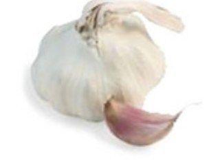 Cesnak