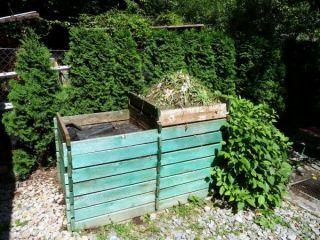Miss kompost 2011