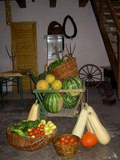 Plody a práca majstra záhradníka