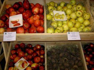 Polské bio ovocie a zelenina