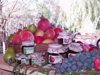 Produkty sadu Lívia