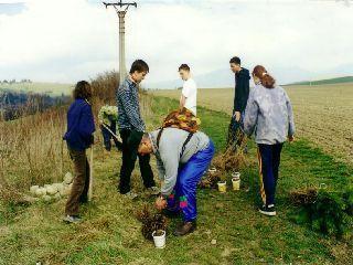 realizácia projektu 10 000 stromov...