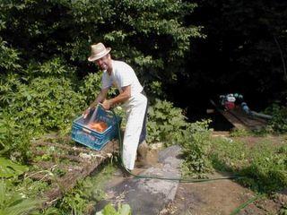Úspešný pestovateľ BIOzeleniny