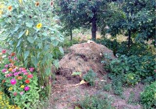 Miss kompost,  foto: Viera Roháčová